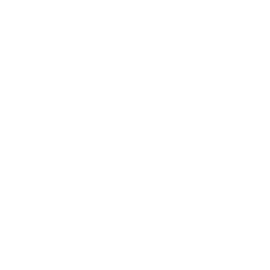 Fair's Fair Mana Taurite Pay Equity Logo